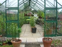 Greenhouse Reorganised