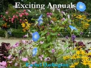 Exciting Annuals Talk Bunclody