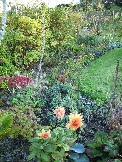 still some orange in the West Garden