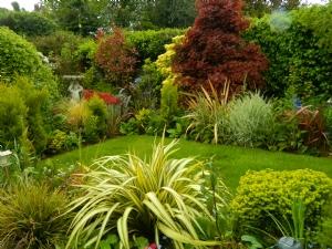 Clare's Garden (Clara)
