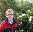 Rhododendron 'Jacksonii'