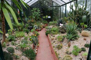 Cactus & Succulent House