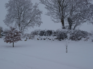 2 Inches more snow here last night