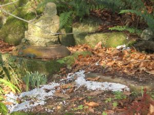 Lord Buddha with hailstones last january