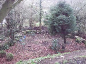 Looking down on 'dad's Garden'-surrounded by the boulder wall
