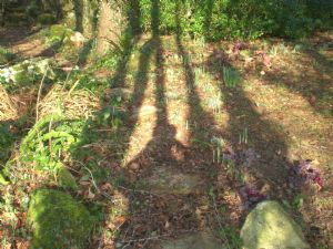 'And the shadows lengthen...'